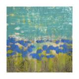 Cornflower Poppies II Kunst på  metal af Jennifer Goldberger