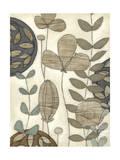 Garden Contours II Prints by Erica J. Vess
