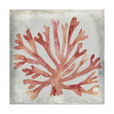 Watercolor Coral III Prints by Megan Meagher