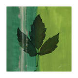 Silver Leaf Tile II Prints by James Burghardt