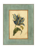 Crackled Spa Blue Tulip II Prints by  Vision Studio