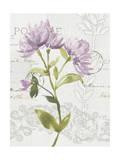 Romantic Watercolor II Premium Giclee Print by Kiana Mosley