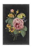 Rose Bouquet II Print by  Vision Studio