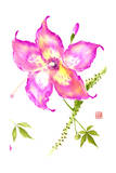 Hibiscus Flower III Prints by Nan Rae