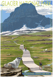 Logan Pass - Glacier National Park, Montana Prints