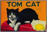 Tom Cat Lemon Label - Orosi, Ca Posters
