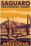 Saguaro National Park, Arizona Posters