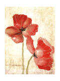 Vivid Red Poppies IV Prints by Leticia Herrera