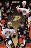 Anaheim Ducks - Group 14 Affischer
