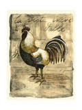 Tuscany Rooster II Print by D. Bookman