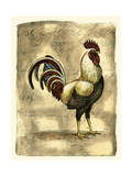 Tuscany Rooster I Prints by D. Bookman