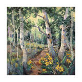Four Seasons Aspens II Prints by Nanette Oleson