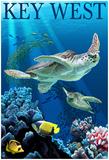 Key West, Florida - Sea Turtles Posters