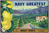 Tustin, California, Navy Greatest Brand Citrus Label Posters