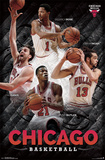 Chicago Bulls - Collage 14 Pósters