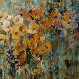 Amber Poppy Field II Premium Giclee Print by Tim O'toole