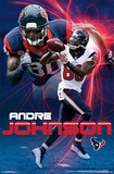 Houston Texans - A Johnson 14 Posters
