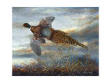 Taking Flight Premium Giclee Print by Carolyn Mock