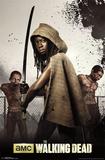 The Walking Dead - Michonne Poster