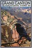 Grand Canyon National Park- Ravens At South Rim Posters