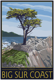 Big Sur Coast, California - Lone Cypress Tree Posters