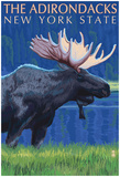 The Adirondacks, New York State - Moose At Night Posters