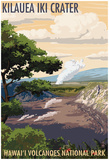 Kilauea Iki Crater, Hawaii Volcanoes National Park Posters