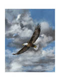 Soaring Poster by Carolyn Mock