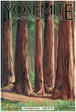 Mariposa Grove - Yosemite National Park, California Posters