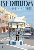 Bermuda - The Birdcage Posters