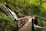 Falls Panorama Photographic Print by Danny Head
