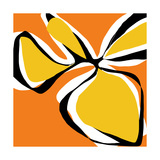 Oh So Pretty - Orange Fotodruck von Jan Weiss