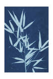Cyanotype No.2 Prints by Renee W. Stramel