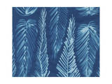 Cyanotype No.8 Print by Renee W. Stramel