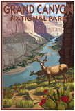 Grand CaNYon National Park, Arizona, Deer Scene Poster