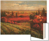 Tuscan Fields of Red Wood Print by Matt Thomas