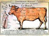 Beef: Diagram Depicting the Different Cuts of Meat Posters