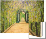 Schoenbrunn, The Palace Gardens Wood Print