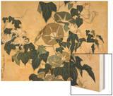 Volubilis et reinette Wood Print by Katsushika Hokusai
