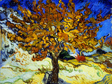 Mulberry Tree, c.1889 Wood Print by Vincent van Gogh