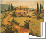 Italian Cypress Wood Print by Roger Williams