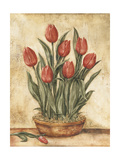 Potted Tulips Wood Print by Tina Chaden