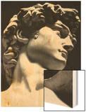David, Michelangelo Buonarroti, Galleria Dell'Accademia, Florence Wood Print by  Michelangelo Buonarroti