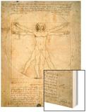 Vitruvian Man, c.1492 Wood Print by  Leonardo da Vinci