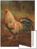 White And Green Rooster Wood Print by Nenad Mirkovich