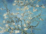 Almond Blossom, 1890 Wood Print by Vincent van Gogh