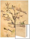 The Oak Wood Sign by Cézanne Paul