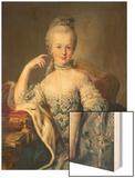 Archduchess Marie Antoinette Habsburg-Lotharingen (1755-93) Wood Print by Martin van Meytens