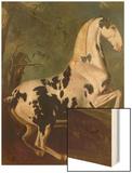 The Piebald Stallion at the Eisgruber Stud Wood Print by Johann Georg de Hamilton