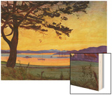 View of Helgeroa Wood Print by Harald Oscar Sohlberg